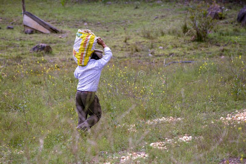 Un hombre que lleva un saco de cebollas imagenes de archivo