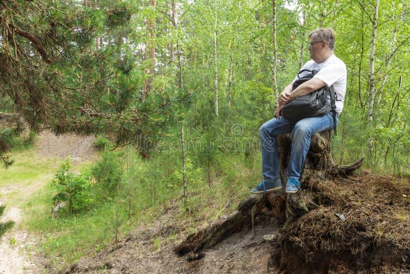Un hombre que se sienta en un tocón de árbol en el bosque foto de archivo libre de regalías