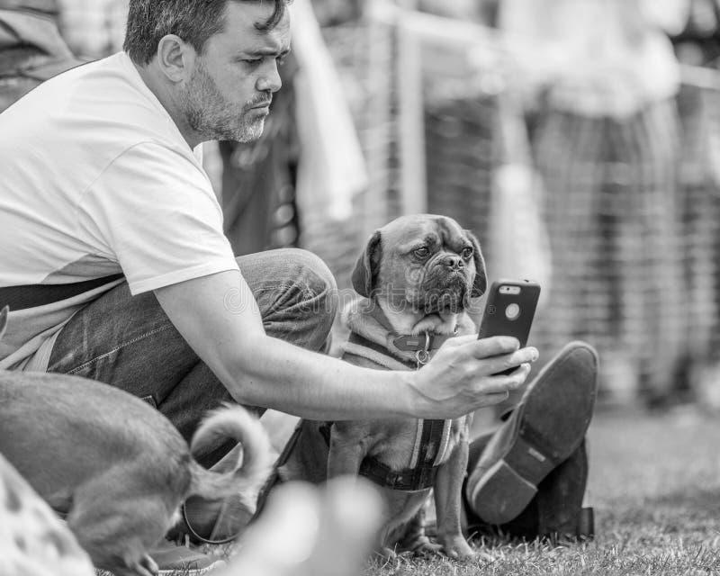Un hombre que toma un selfie con un perro en el parque en una exposición canina fotos de archivo