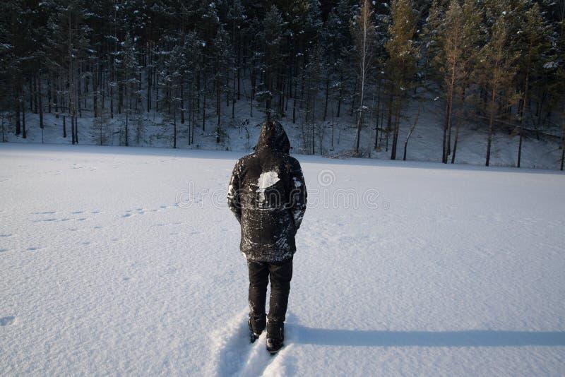 Un hombre solo camina en la nieve Silueta dramática de un hombre que camina en un claro nevoso en el bosque frío fotos de archivo