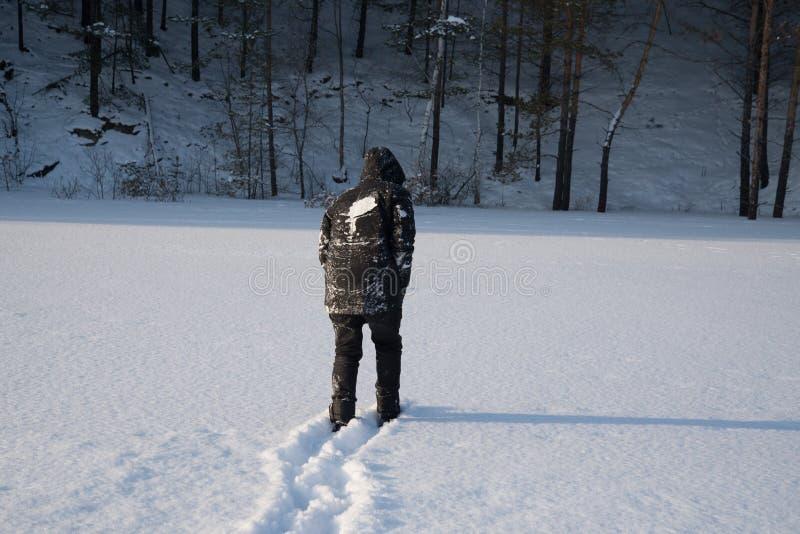 Un hombre solo camina en la nieve Silueta dramática de un hombre que camina en un claro nevoso en el bosque frío imagen de archivo libre de regalías