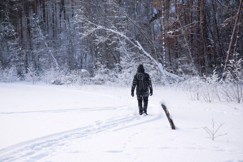 Un hombre solo camina en la nieve Silueta dramática de un hombre que camina en un claro nevoso en el bosque frío fotografía de archivo