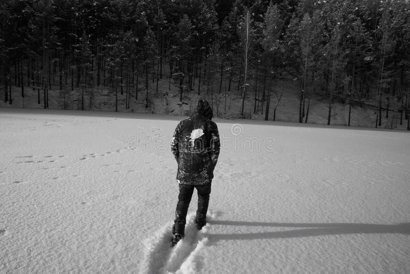 Un hombre solo camina en la nieve Silueta dramática de un hombre que camina en un claro nevoso en el bosque frío fotografía de archivo libre de regalías