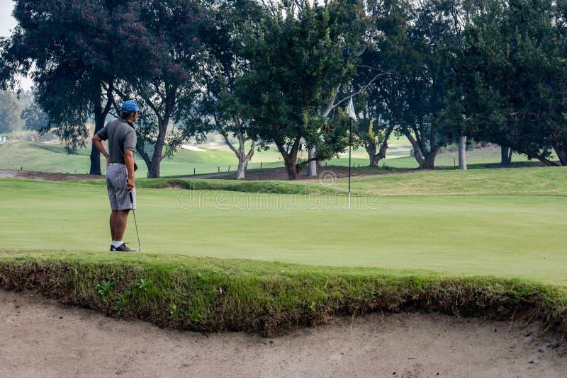 Un homme contemple son putt sur le vert jouant au golf photos stock