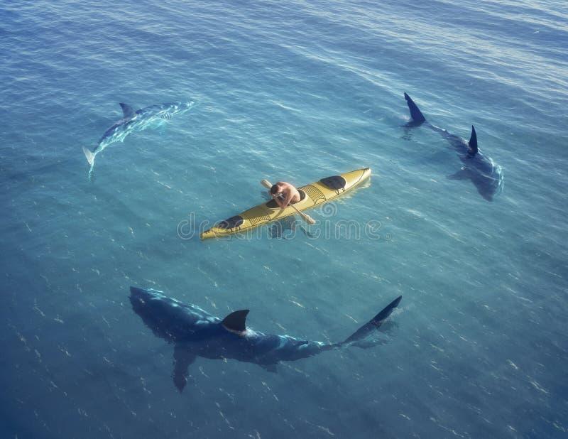 Un homme dans un bateau, kayak. a été emprisonné au milieu de l'océan entouré par des requins. photographie stock libre de droits