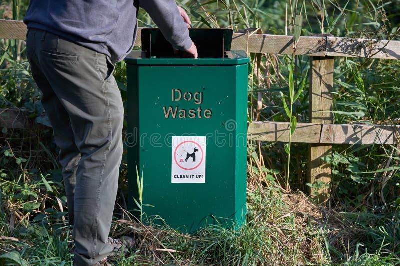 Un homme met un sac d'excrément d'un chien dans un contenant de déchets images stock