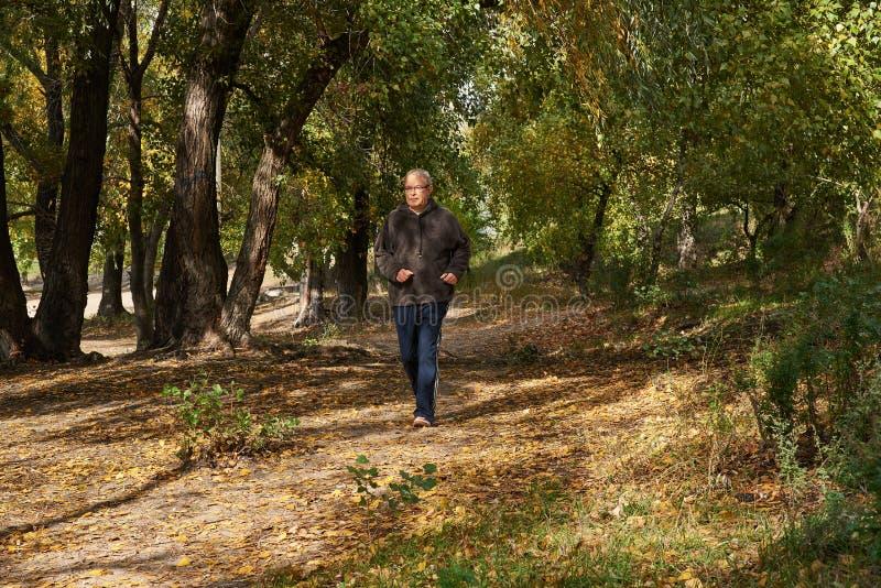 Un homme plus âgé court le long du chemin dans la forêt image libre de droits