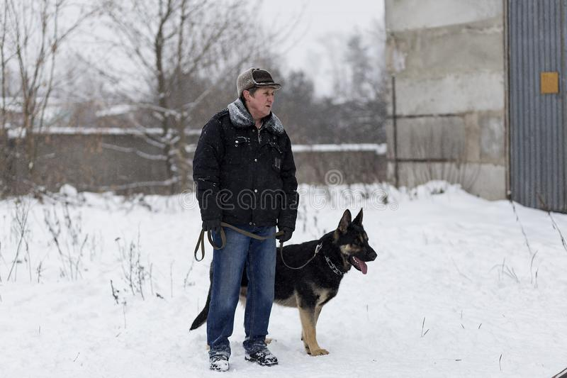 Un homme plus âgé marchant avec un berger allemand pendant l'hiver, image stock