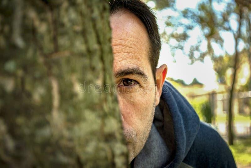Un homme remarquant derrière un arbre photos stock