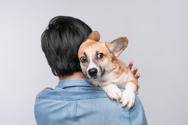 Un homme se blottissant et étreignant son chien, amitié étroite aimant dedans image libre de droits