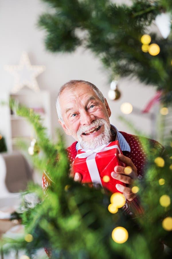 Un homme supérieur avec un présent dans un arbre de Noël se tenant prêt enveloppé de boîte photo libre de droits