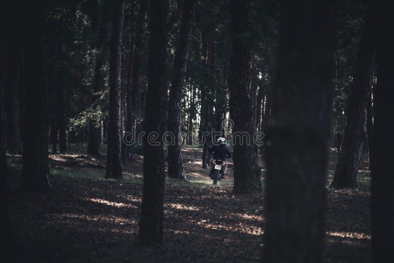 Un homme sur des tours d'une moto dans les bois entre les arbres Lumi?re et ombre Paysage photographie stock libre de droits