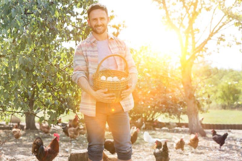 Un homme tenant des oeufs dans un panier avec des poulets en arrière-plan à la ferme et des lentilles jaunes en arrière-plan image stock