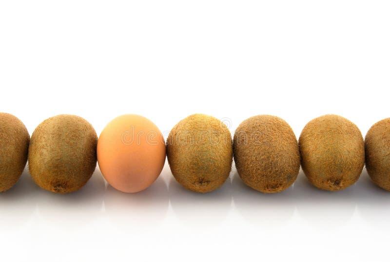 Un huevo en una fila de kiwis fotografía de archivo libre de regalías