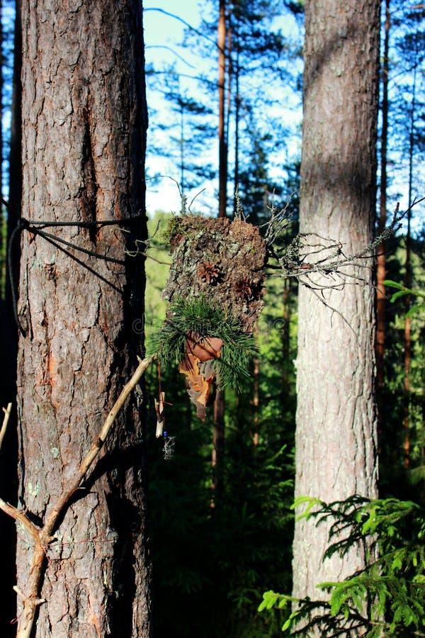 Un idolo della foresta dal bastone della corteccia e pigne fatte per persuadere gli alcoolici paganism immagine stock libera da diritti