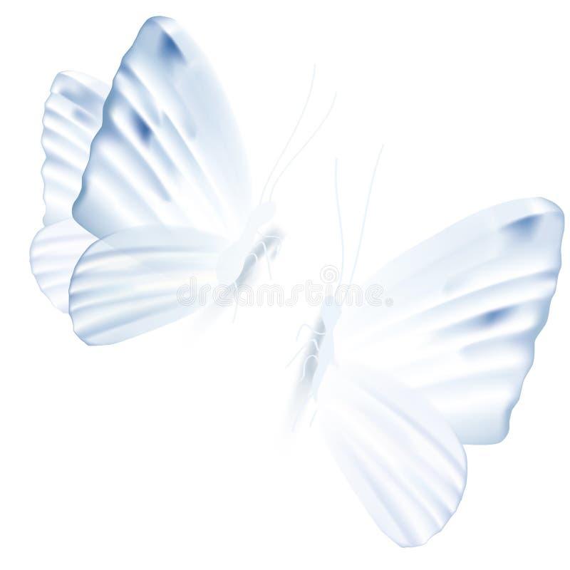 Un'illustrazione di vettore di due farfalle blu-chiaro royalty illustrazione gratis