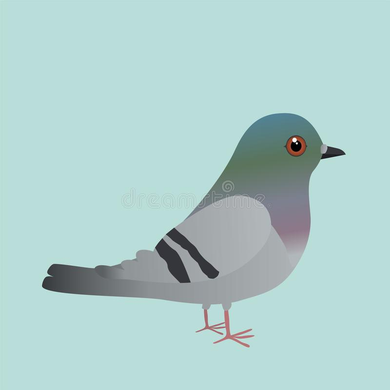 Un'illustrazione sveglia del fumetto del piccione fotografie stock libere da diritti