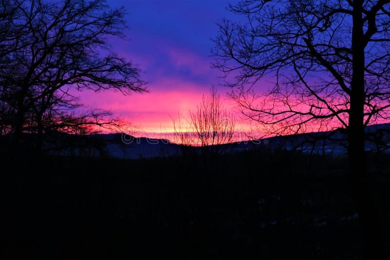 Un'immagine di concetto di un'alba con alcune siluette degli alberi fotografie stock libere da diritti