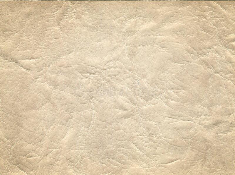 Un'immagine di un fondo di cuoio piacevole Struttura della pelle bovina fotografia stock libera da diritti