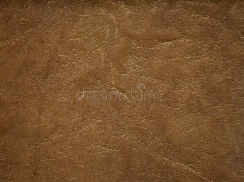 Un'immagine di un fondo di cuoio piacevole Struttura della pelle bovina fotografie stock libere da diritti