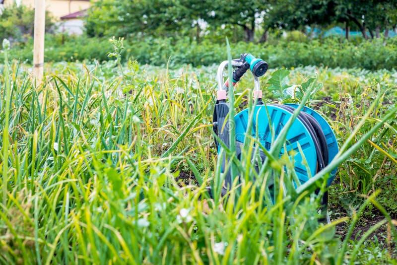 Un'immagine di un tubo flessibile di giardino Tubo flessibile per irrigazione fotografie stock