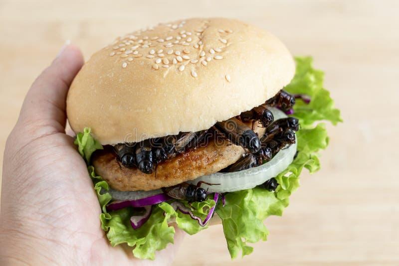 Un insetto di grilli per aver mangiato come cibo in un hamburger di pane fatto di carne fritta di insetto con verdure nelle mani  fotografie stock libere da diritti