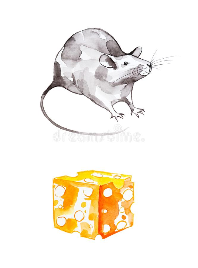 Un insieme del ratto grigio e un pezzo di formaggio giallo Un simbolo di 2020 nuovi anni Illustrazione dell'acquerello isolata su royalty illustrazione gratis