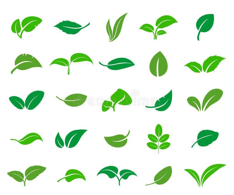 Un insieme delle foglie astratte di vari alberi e piante illustrazione di stock