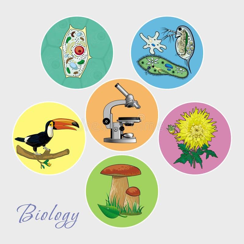 Un insieme delle immagini sul tema di biologia royalty illustrazione gratis