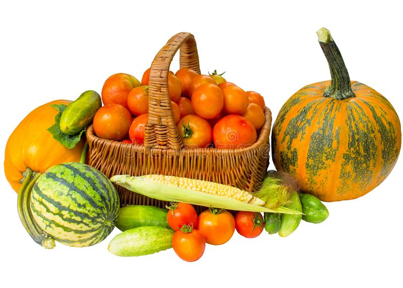 Un insieme di autunno dei prodotti isolati su un fondo bianco immagini stock