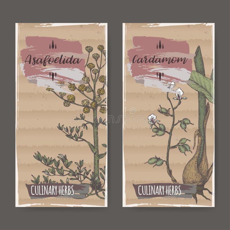 Un insieme di due etichette di colore con lo schizzo disegnato a mano del cardamomo e dell'assafetida illustrazione di stock