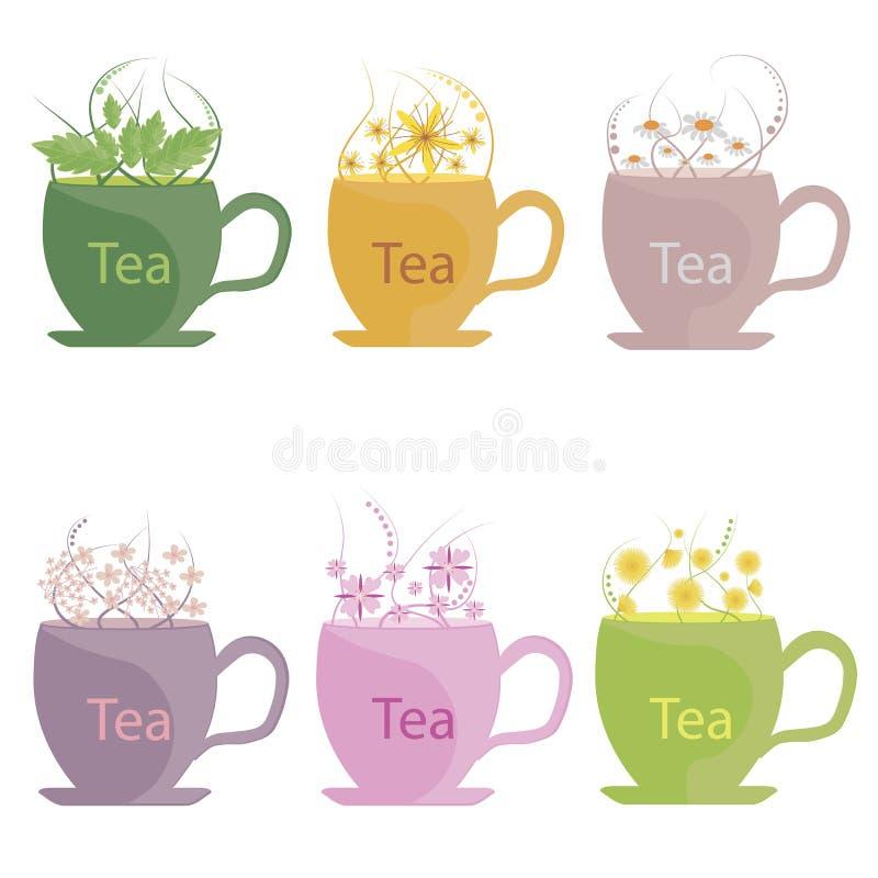 Un insieme di tè fatto dal tè delle erbe, della menta, della melissa, della camomilla, del tiglio e di ivan Illustrazione di vett illustrazione vettoriale