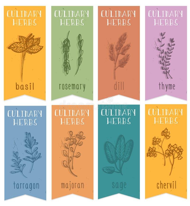 Un insieme di uno schizzo disegnato di erbe di 8 etichette a disposizione Insegne verticali con basilico, cerfoglio, rosemari, an illustrazione vettoriale