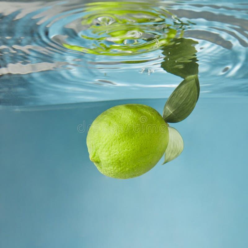 Un'intera calce verde fresca, con le foglie verdi che cadono nell'acqua con una spruzzata su un fondo blu fotografia stock libera da diritti