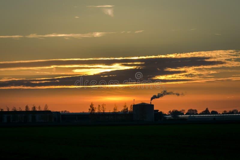 Un invernadero en Holanda está alimentando debajo del cielo de igualación fotografía de archivo