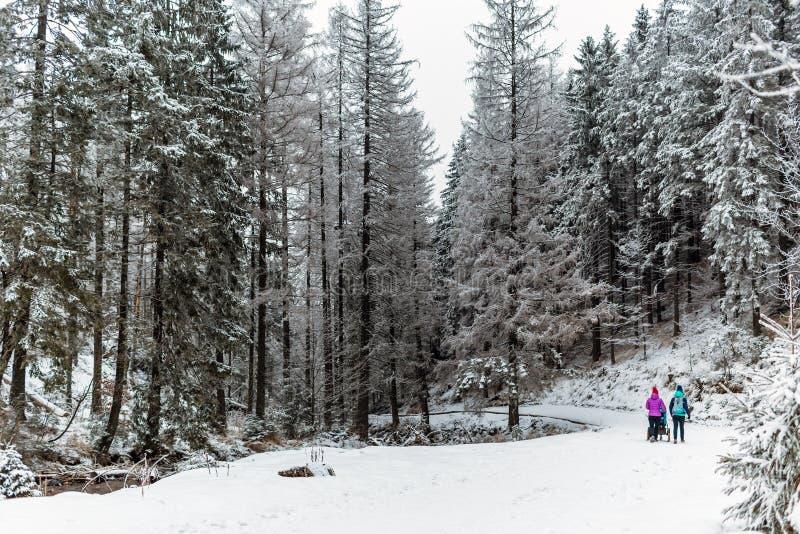 Un inverno di due donne che fa un'escursione con il passeggiatore, la madre ed il bambino di bambino fotografie stock