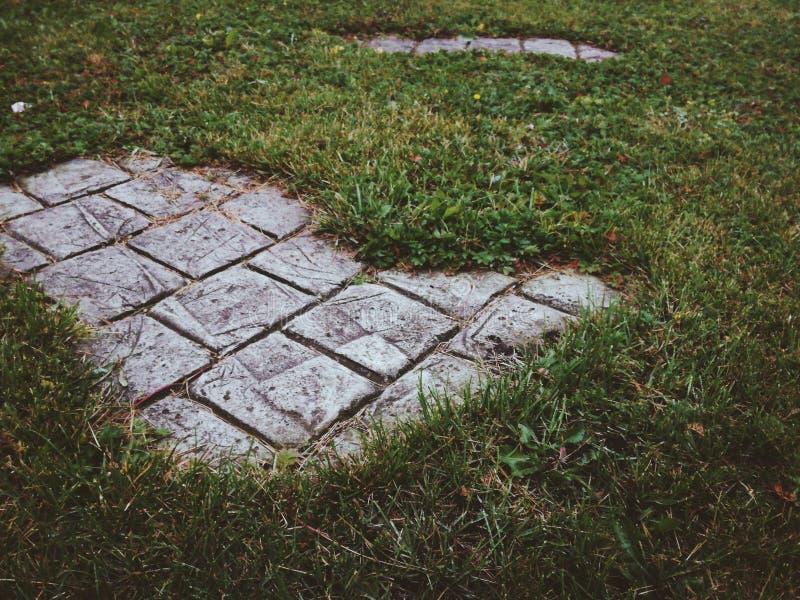 Un'isola di pietra nell'erba fotografia stock libera da diritti