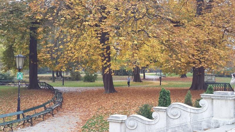 Un jardín asombroso en Viena Burggarten imagen de archivo libre de regalías
