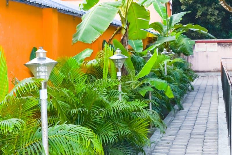 Un jardin admirablement manicured a décoré la voie de roches, les plantes ornementales, et les buissons de fleur Pelouse d'une ma photographie stock libre de droits