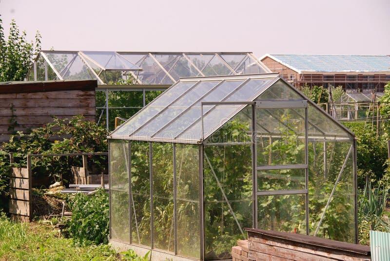 Un jardin d'allotissement photo libre de droits