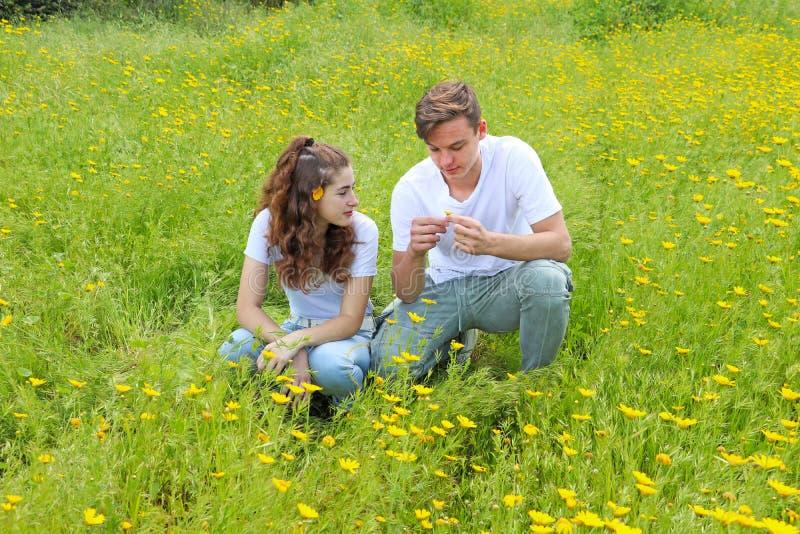 Un jeune couple adolescent ayant l'amusement dans un domaine de chrysanthème photo libre de droits