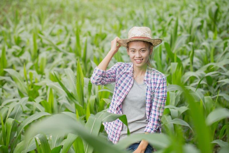 Un jeune et bel agriculteur sourit heureusement dans son jardin de maïs photos libres de droits