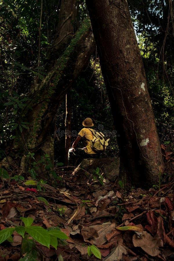 Un jeune homme aventurier avec sac à dos debout dans la jungle concept est Voyage Mode de vie et aventure images stock