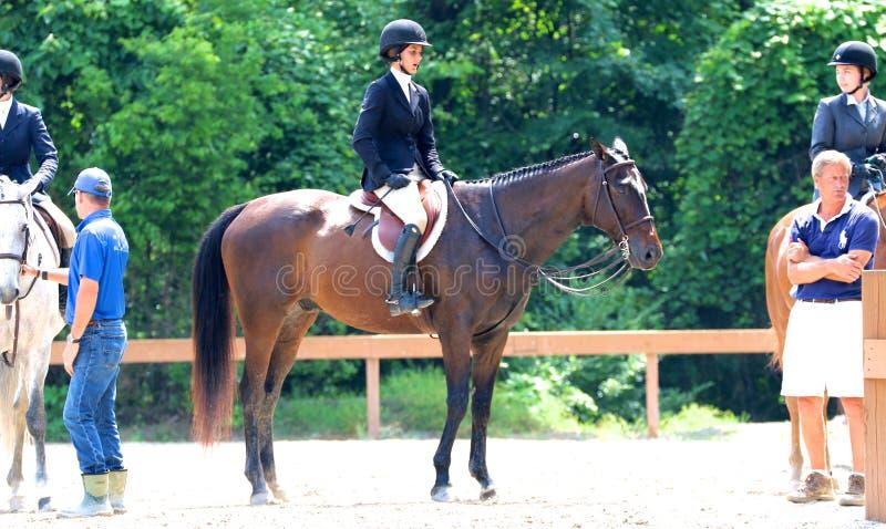 Un jeune jockey féminin Sits Atop un cheval au concours hippique de charité de Germantown image libre de droits
