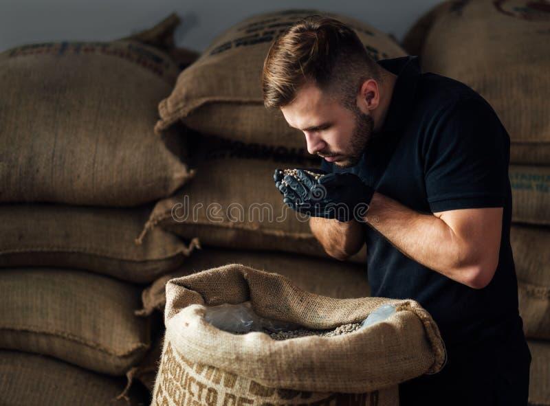 Un jeune ouvrier reniflant une poignée de haricots crus frais dans un sac de burlap à l'entrepôt de caféiers photographie stock