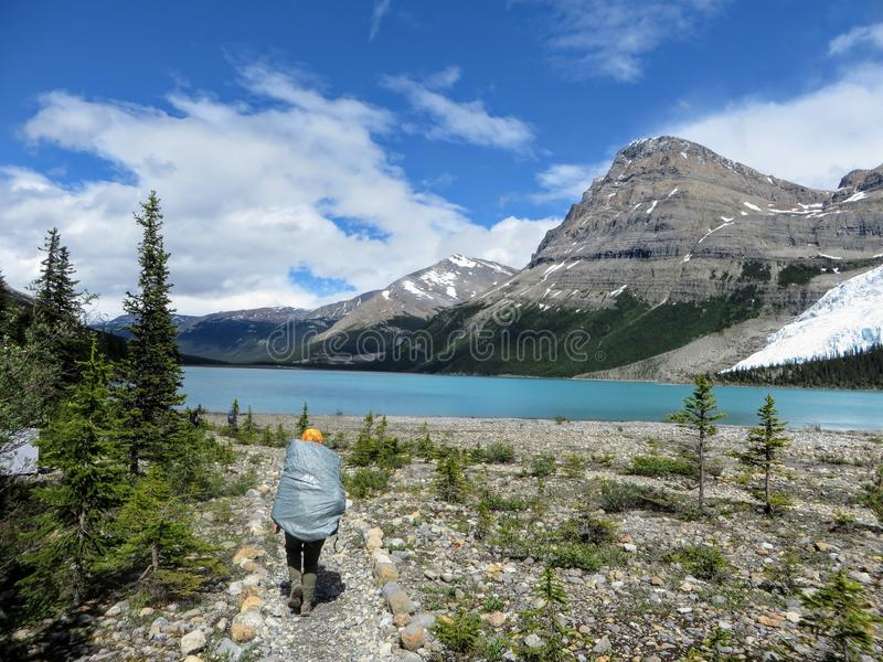 Un jeune randonneur féminin trimardant le long de la traînée de lac berg photo libre de droits