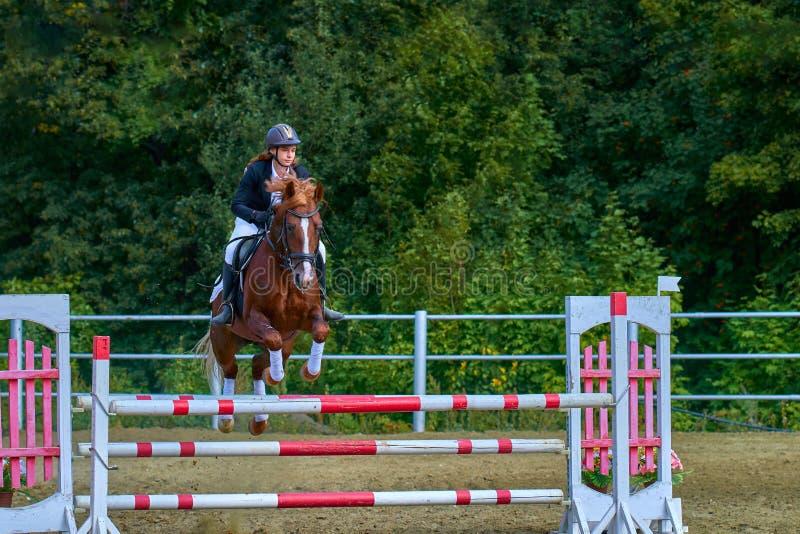 Un jinete de la mujer joven en un caballo realiza un salto a través de la barrera foto de archivo