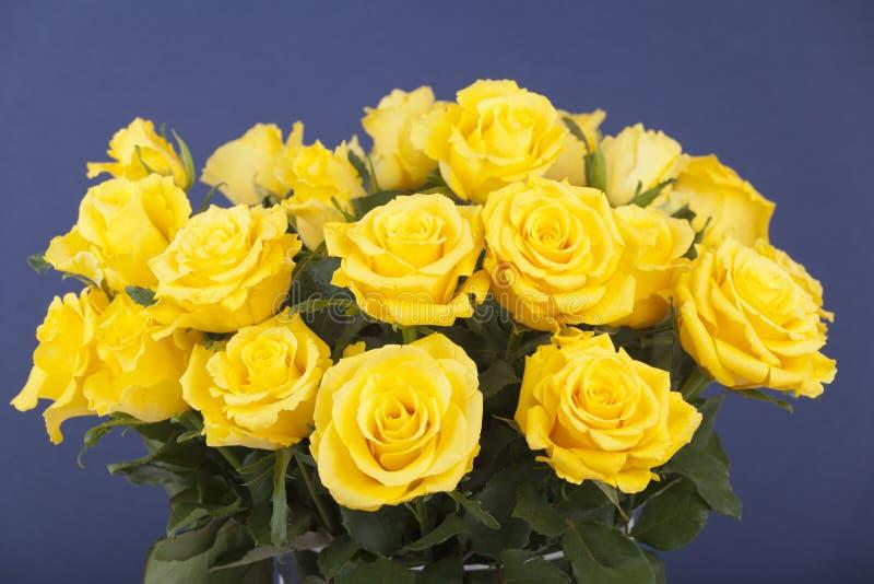 Un joli groupe de roses jaunes sur la terre bleue photo stock