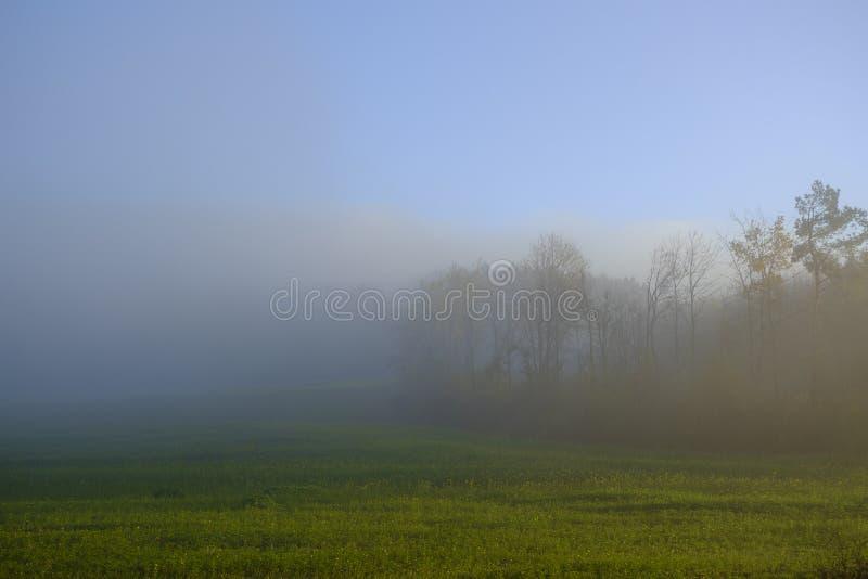 Un jour Brumous d'octobre photographie stock libre de droits