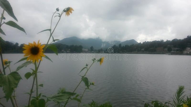 Un jour de paix au lac photo stock